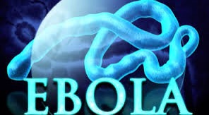 El dominio ebola.com en venta por 150.000 dólares.